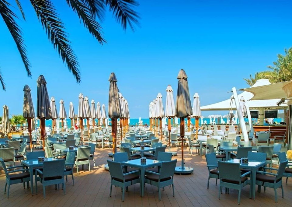 sky tree chair umbrella leisure Resort marina palm dock lined restaurant Beach walkway plaza