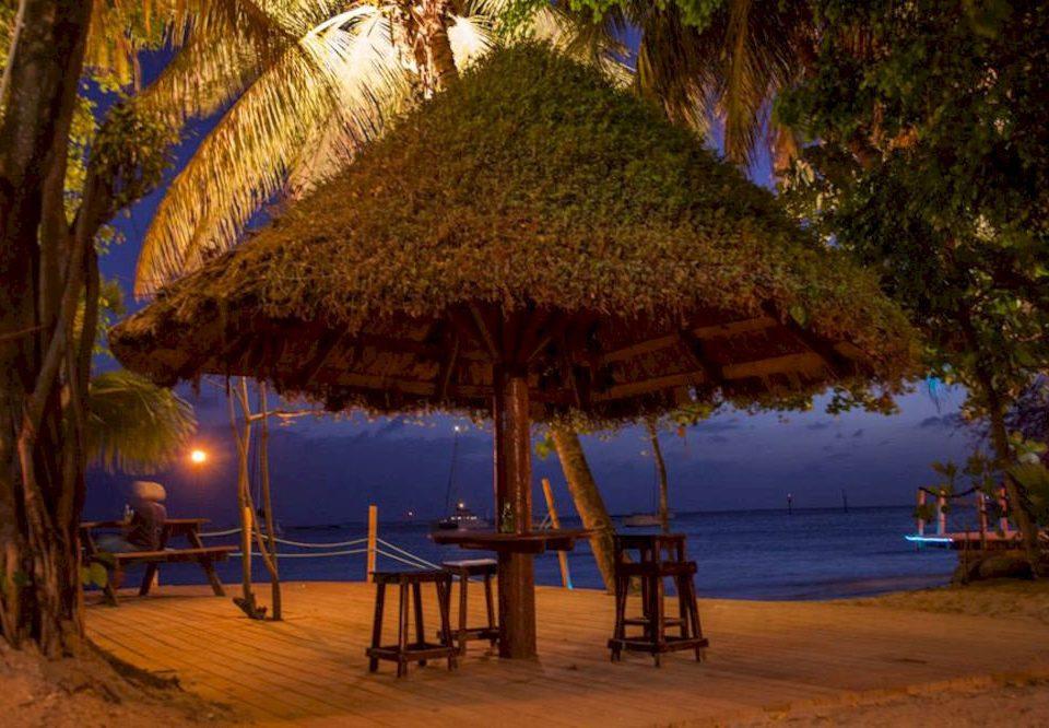 tree ground Resort hut Beach shore