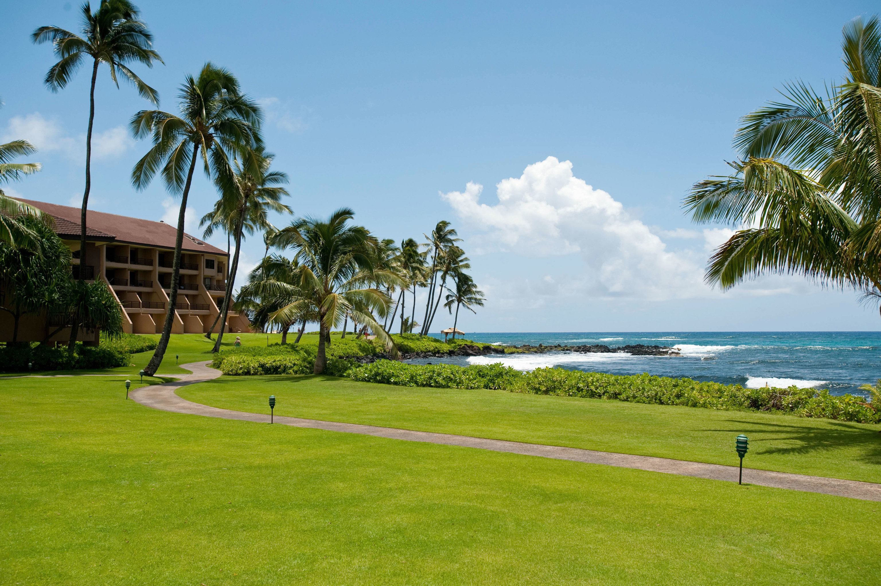 grass tree sky palm structure sport venue arecales Beach Sea plant Resort golf course lawn palm family