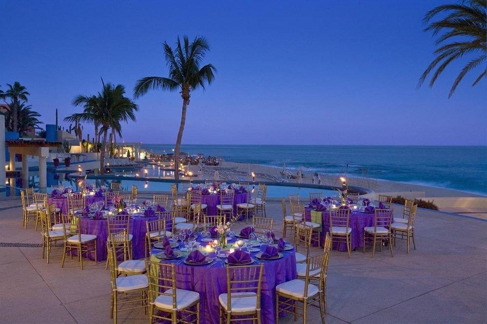 sky Beach Resort palm caribbean Sea shore lined