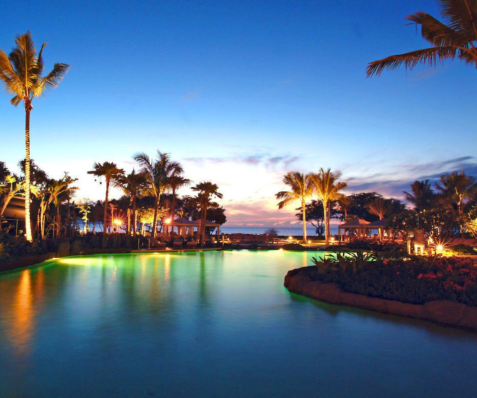 sky water tree night Resort dusk evening arecales Sunset Beach amusement park Sea park cityscape