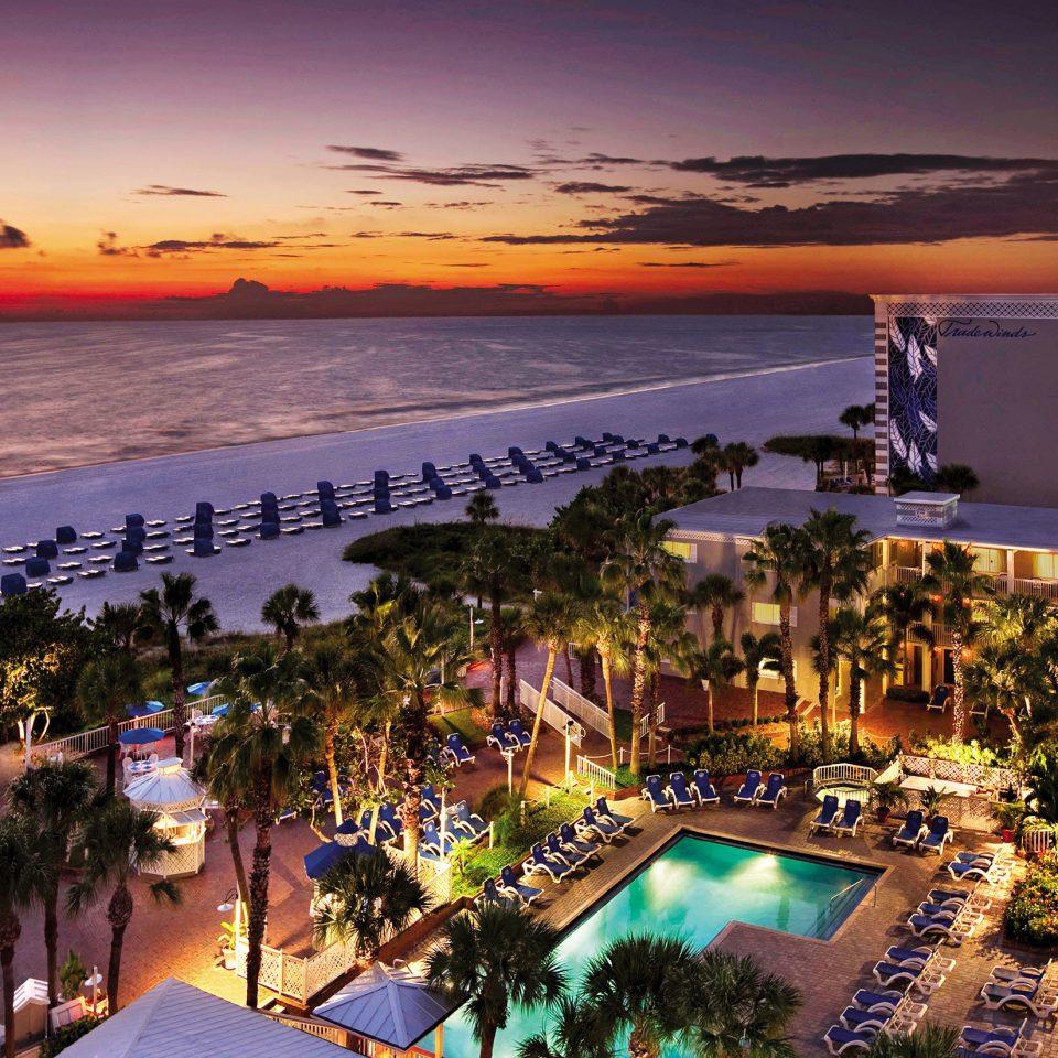 tree sky evening Beach Resort dusk Sunset Sea marina