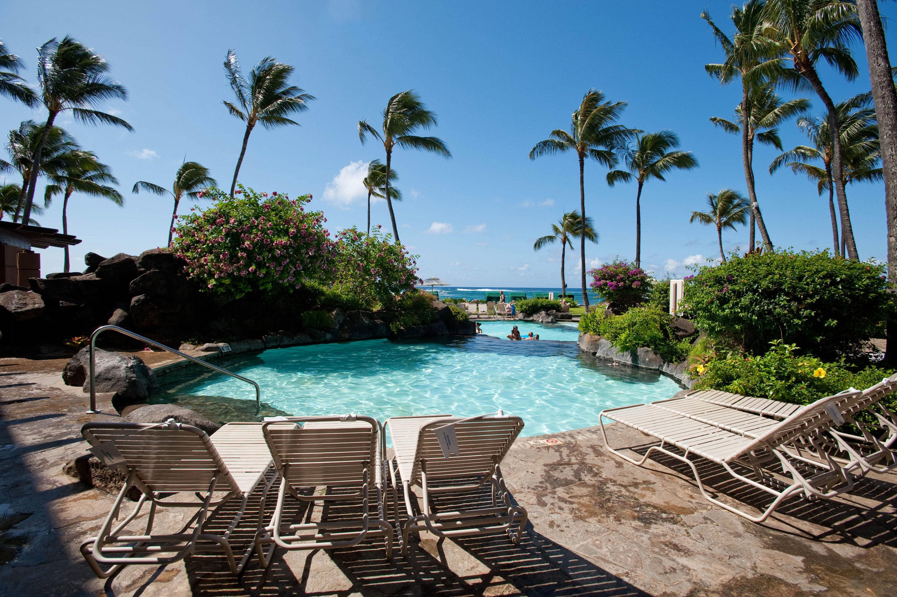 tree sky chair umbrella swimming pool leisure property Resort lawn caribbean Villa arecales lined Beach backyard Sea mansion palm sunny shade set day sandy