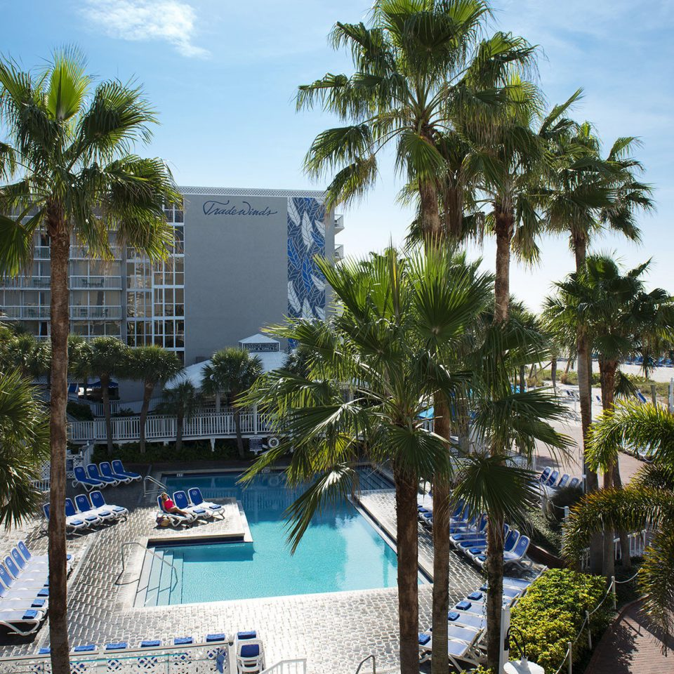 tree sky property Resort condominium Beach arecales marina plant caribbean Sea dock Villa palm