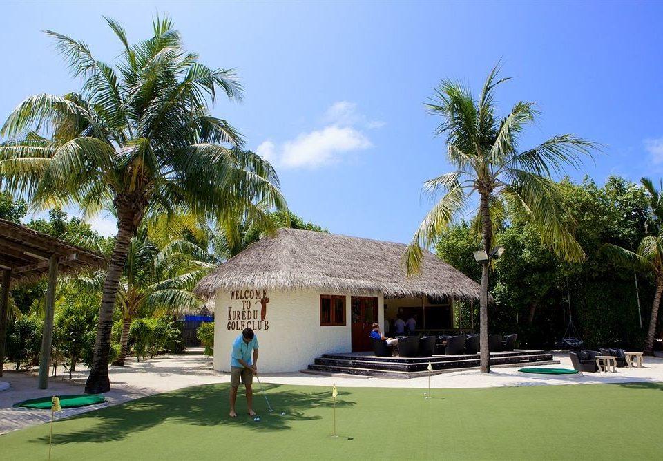 tree sky property Resort Beach arecales home palm palm family caribbean Villa plant