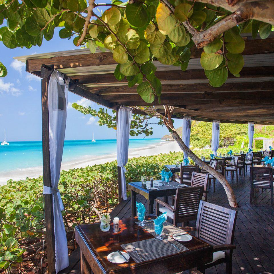 tree Resort chair leisure plant restaurant outdoor structure Villa cottage arecales Beach shade