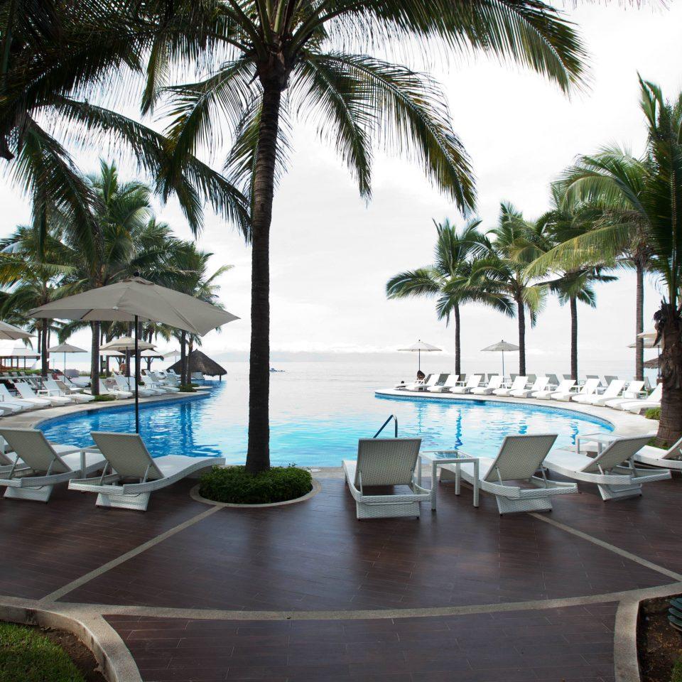 tree leisure property Resort caribbean arecales palm swimming pool plant condominium Beach Villa marina palm family lined