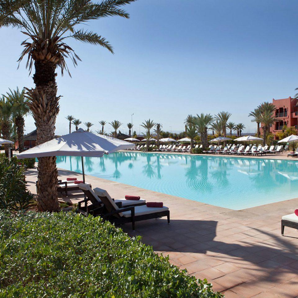 tree sky leisure swimming pool property Resort Villa Beach backyard palm lined shade