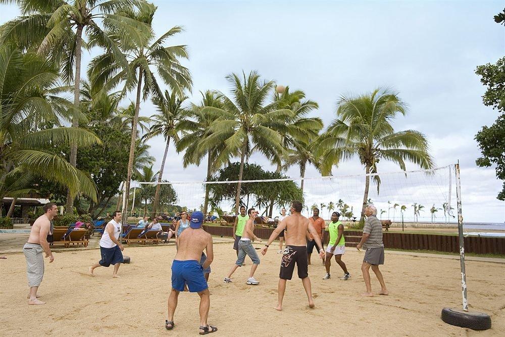tree sky ground Beach palm arecales walkway caribbean Sea plant beach volleyball boardwalk sandy shore