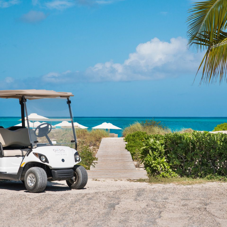 sky tree road Beach golfcart vehicle yellow palm caribbean Sea arecales sandy shade day