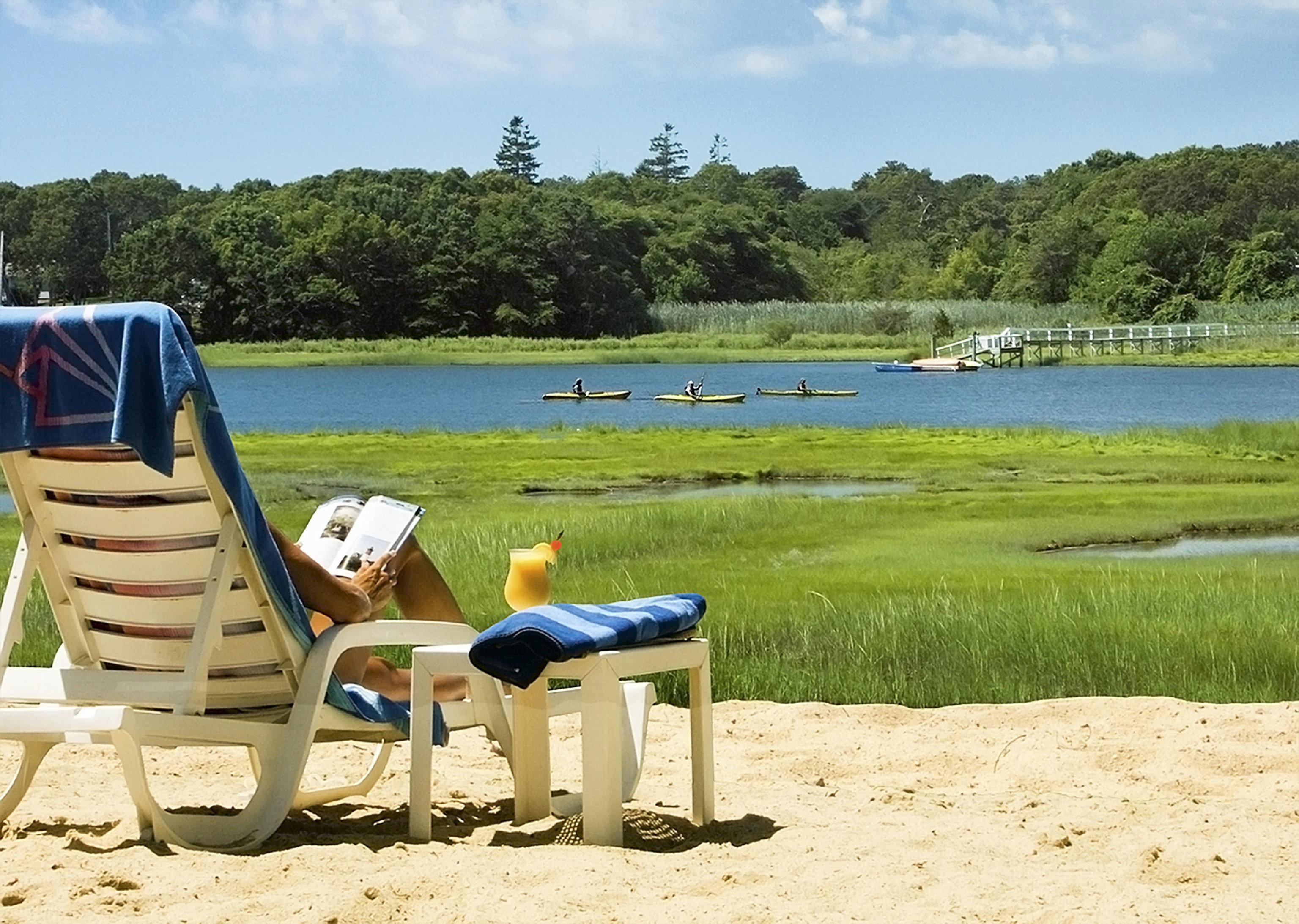 sky tree grass leisure Beach shore Sea chair seat day