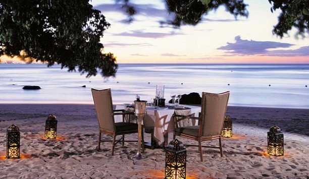 tree shore Beach sky evening water Sea leisure recreation
