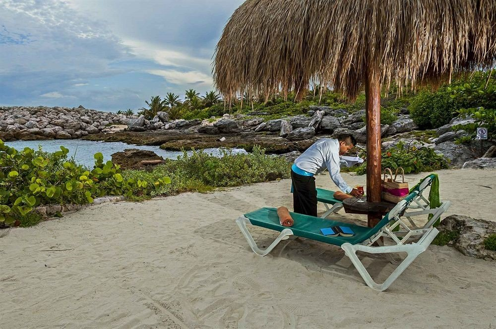 ground Beach shore Sea vehicle lawn sand plant sandy set