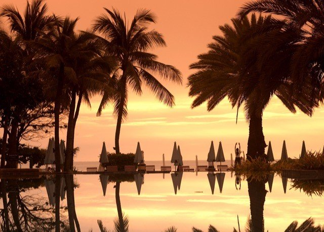 palm water sky tree plant Beach Sunset sunrise morning arecales savanna dusk evening dawn palm family lined Sea sandy line