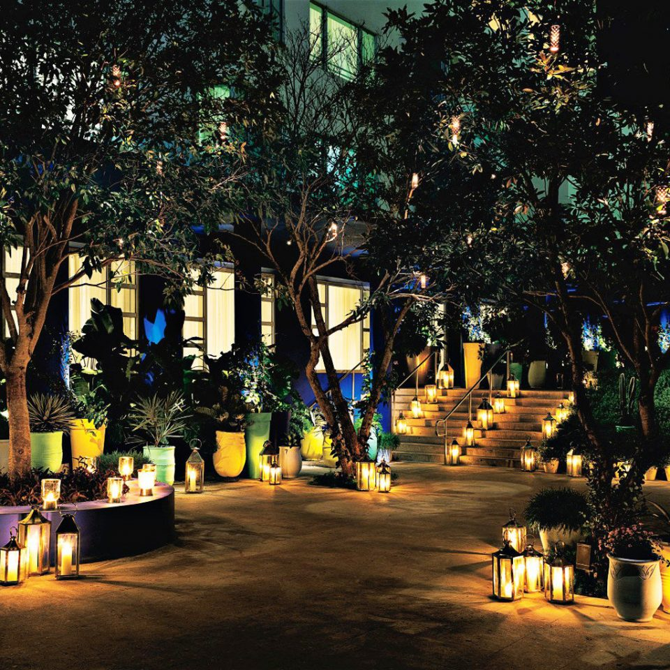 Beachfront Buildings Exterior Grounds Honeymoon Lobby Lounge Luxury Modern Nightlife Play Pool Resort Romance Waterfront tree night light evening lighting Christmas lit landscape lighting christmas decoration christmas lights