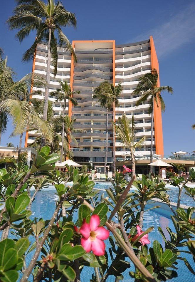 Beachfront Buildings Exterior Hot tub/Jacuzzi Lounge Pool Tropical tree plant building palm botany flower Resort arecales condominium apartment building Garden surrounded