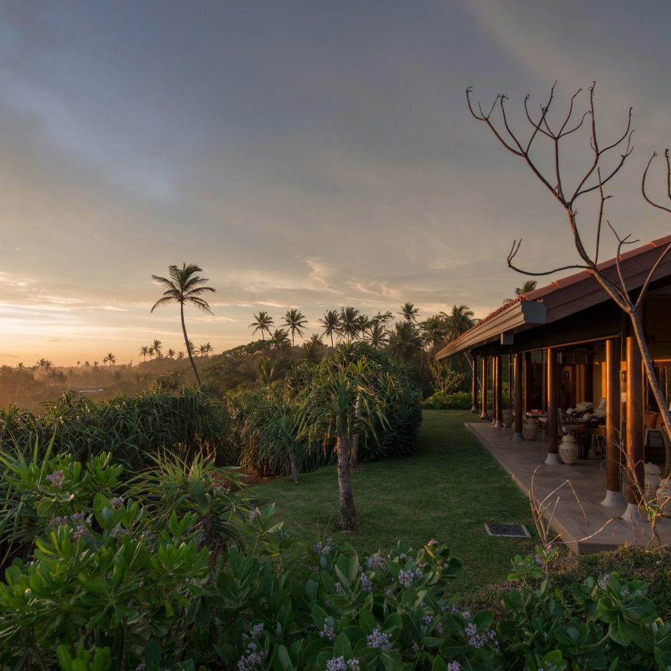 Beachfront Buildings Exterior Island Luxury Resort sky grass tree house field morning rural area landscape evening Sunset agriculture sunlight flower lush