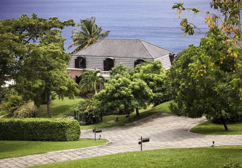 Beachfront Historic tree grass park house property building home residential area lawn Garden yard mansion backyard cottage landscape architect Villa flower Courtyard suburb lush stone surrounded