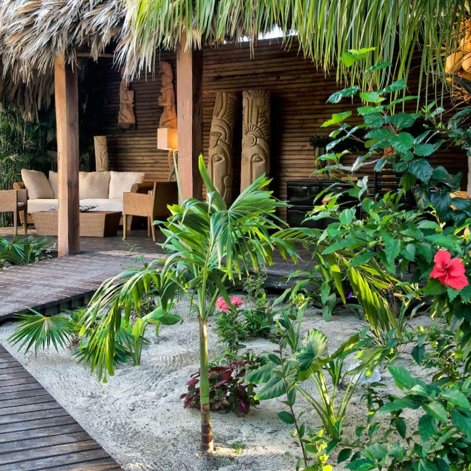 Beachfront Garden Lounge Patio Resort Scenic views ground botany backyard yard plant flower Jungle walkway Courtyard cottage surrounded