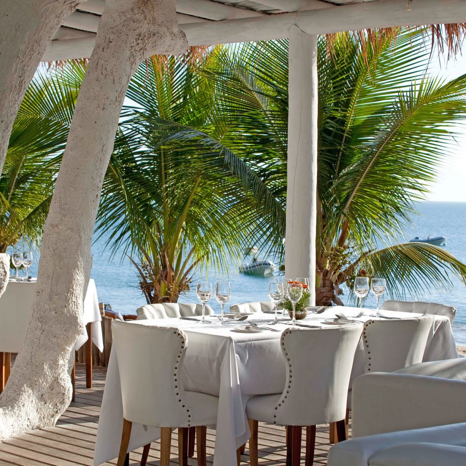 Beachfront Dining Drink Eat Resort Scenic views tree restaurant arecales caribbean plant home Villa