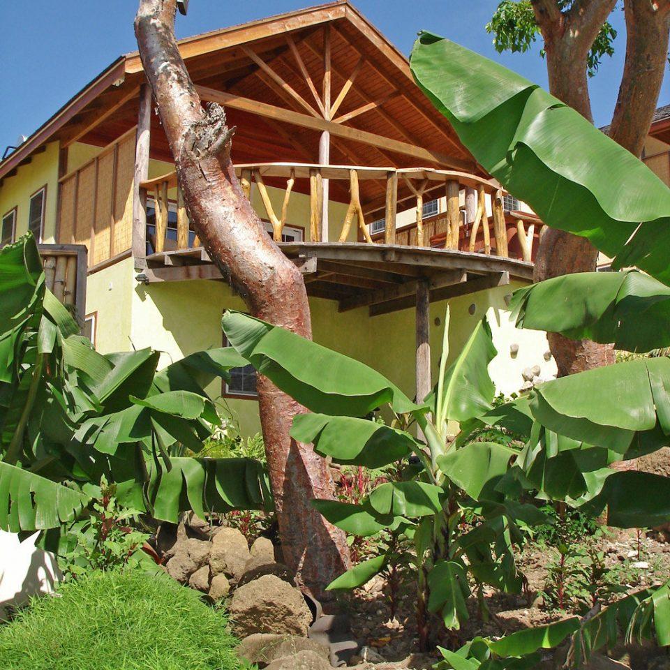 Beachfront Eco Island Villa tree house Garden backyard Jungle outdoor structure yard flower plant