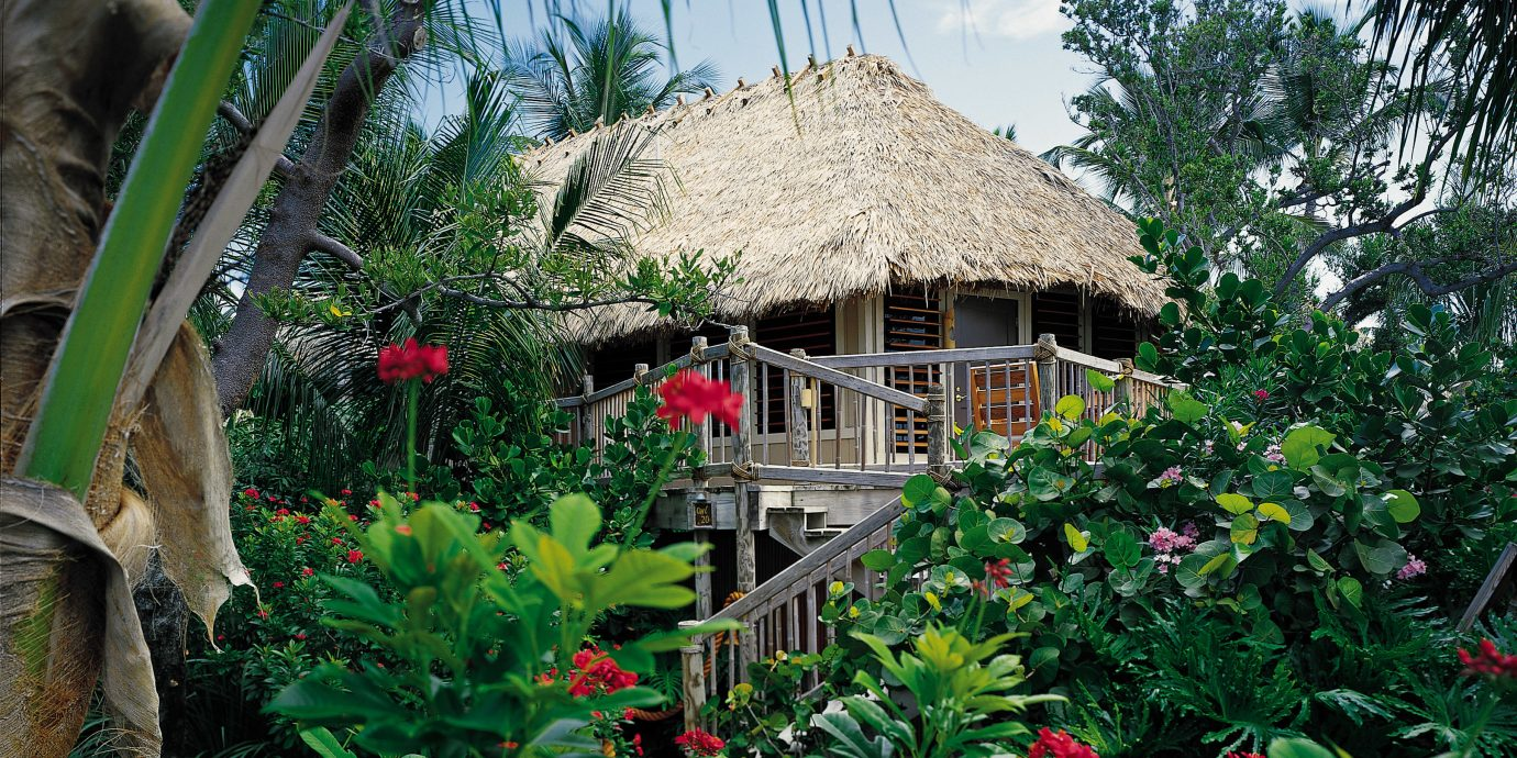 Beachfront Exterior Hotels Island Outdoors Resort Romance Romantic Secret Getaways Trip Ideas Waterfront tree house plant Garden botany flower Jungle greenhouse yard backyard cottage tropics rainforest outdoor structure bushes surrounded