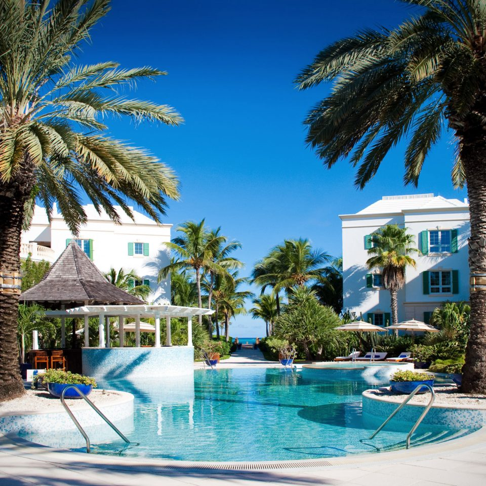 Beachfront Family Hotels Luxury Play Pool Resort Scenic views Trip Ideas tree palm swimming pool property leisure caribbean arecales resort town condominium Villa palm family lined swimming blue surrounded shade
