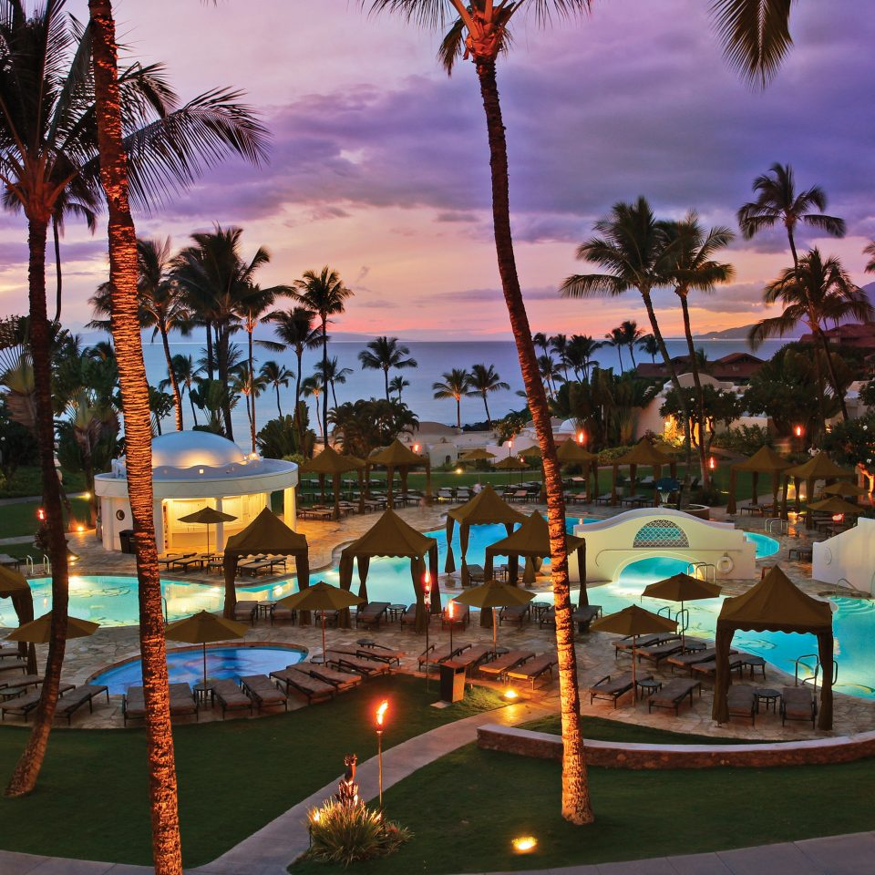 Beachfront Family Nightlife Play Pool Resort tree palm leisure amusement park plant swimming pool lined Water park park
