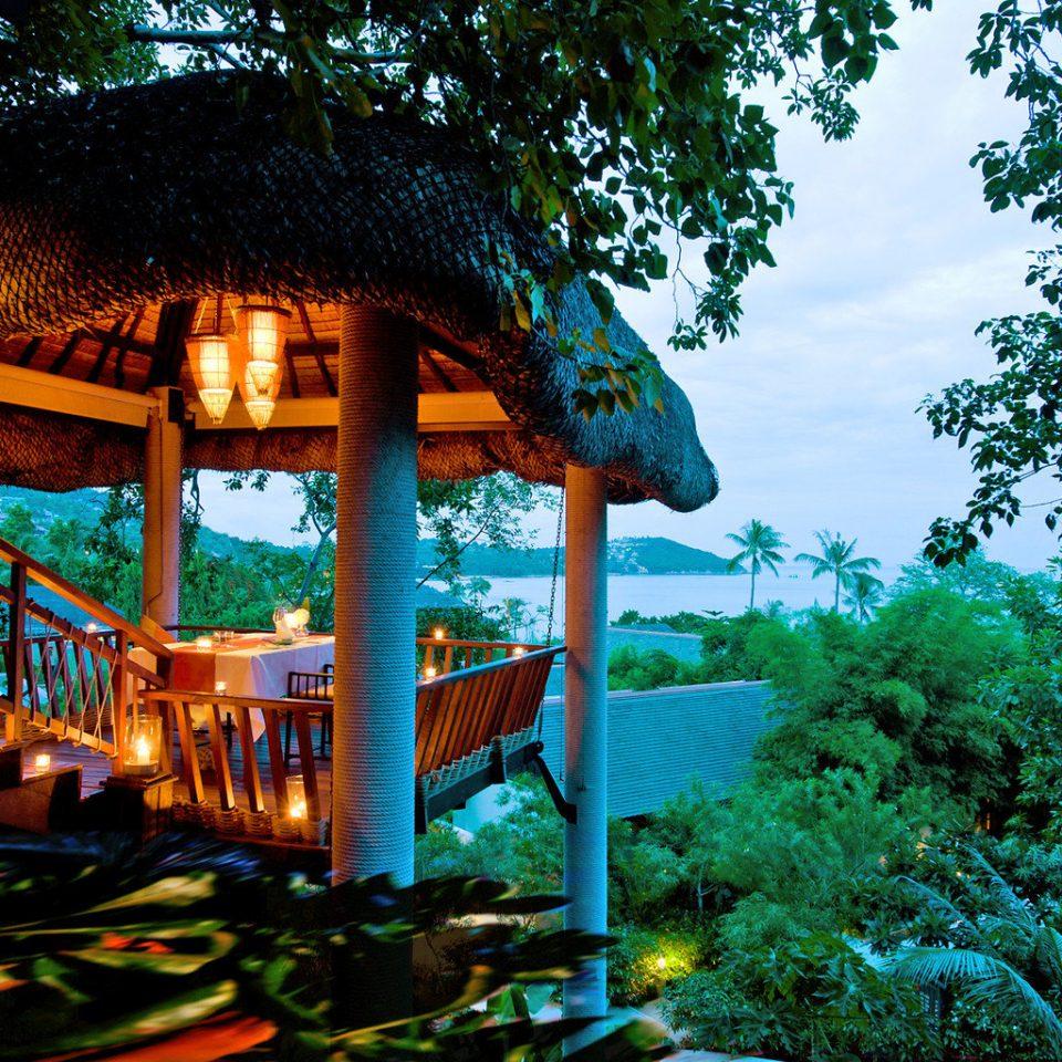 Beachfront Lounge Ocean Resort Tropical tree building Jungle tropics Forest rainforest amusement park