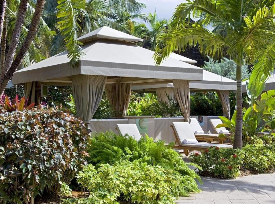 Beachfront Garden Grounds Honeymoon Modern Resort Romance Romantic Tropical tree property botany home Villa cottage outdoor structure backyard flower botanical garden plant