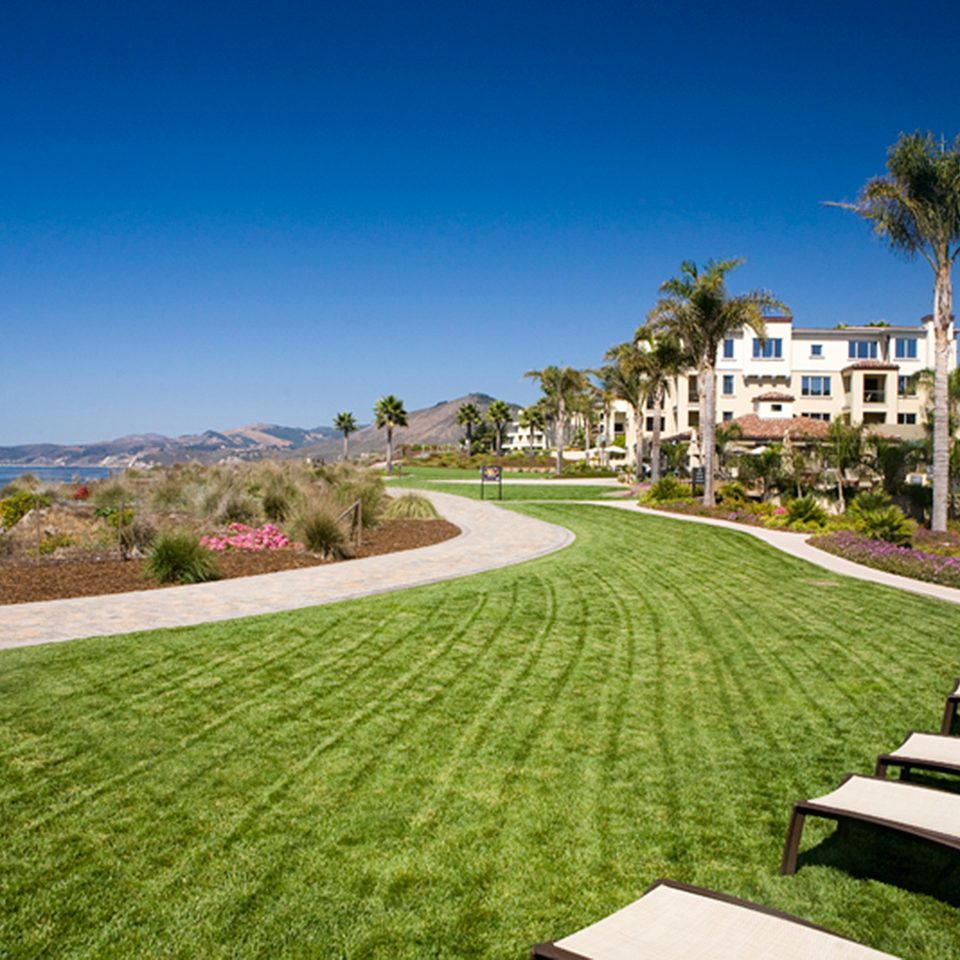 Beachfront Garden Grounds grass sky park residential area lawn walkway green landscape Resort home lush