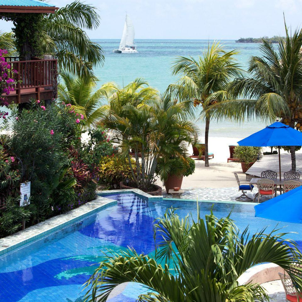 Beachfront Play Pool Scenic views tree umbrella Resort swimming pool property leisure palm plant Villa caribbean lawn backyard Garden condominium shade colorful swimming lined