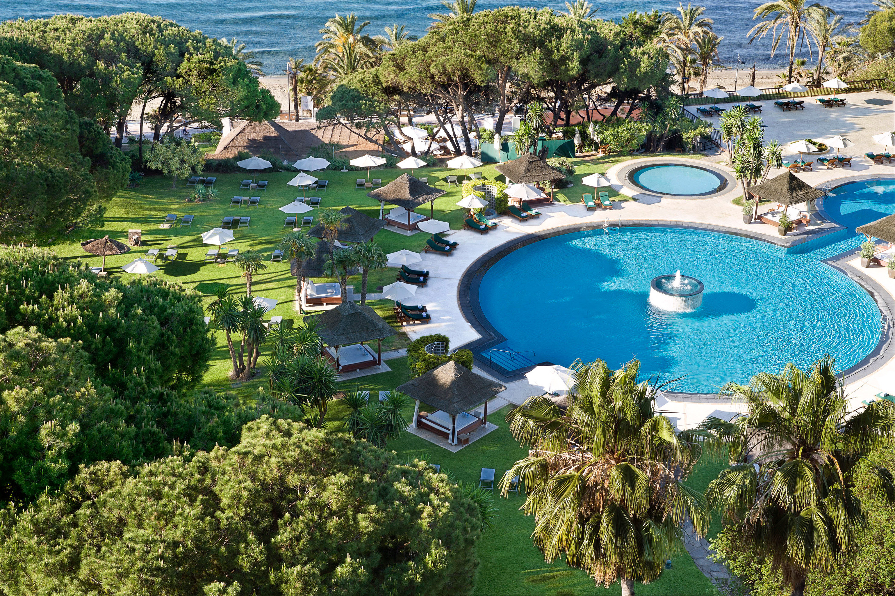 Beachfront Pool Resort Waterfront tree water swimming pool leisure property reef resort town mansion Water park lawn park overlooking Garden lined day