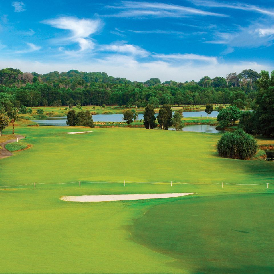 Beachfront Golf Scenic views tree grass athletic game Sport structure green sport venue sports golf course ball game golf club outdoor recreation lawn recreation individual sports