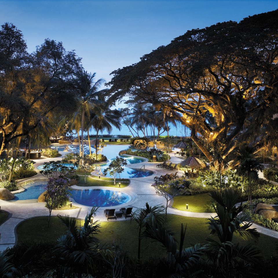 Beachfront Grounds Lounge Luxury Patio Pool tree sky night Resort landscape evening Nature park plant