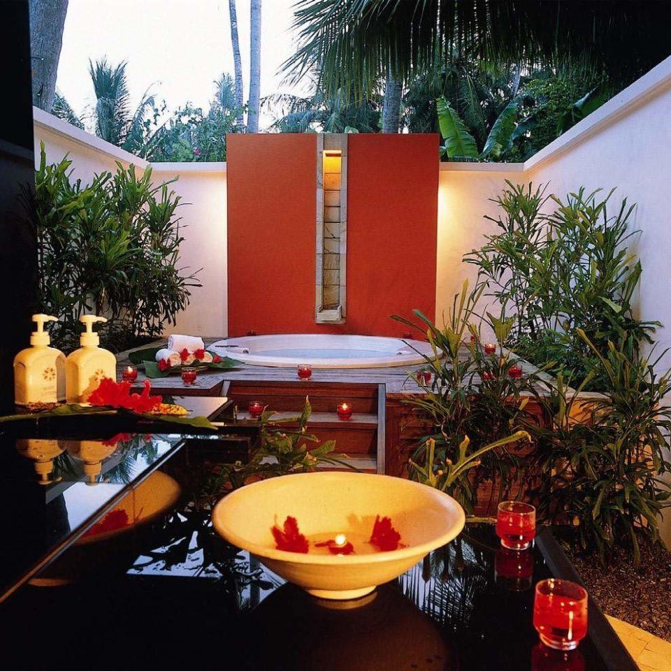 Beachfront Hip Lounge Luxury Modern tree backyard restaurant home