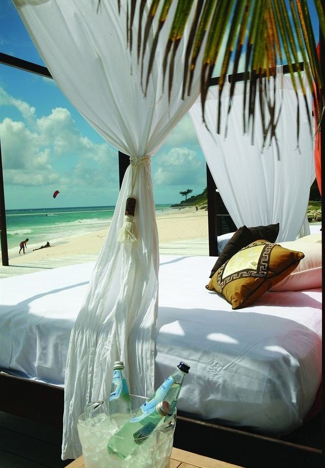 Beachfront Lounge Modern Romantic color flower