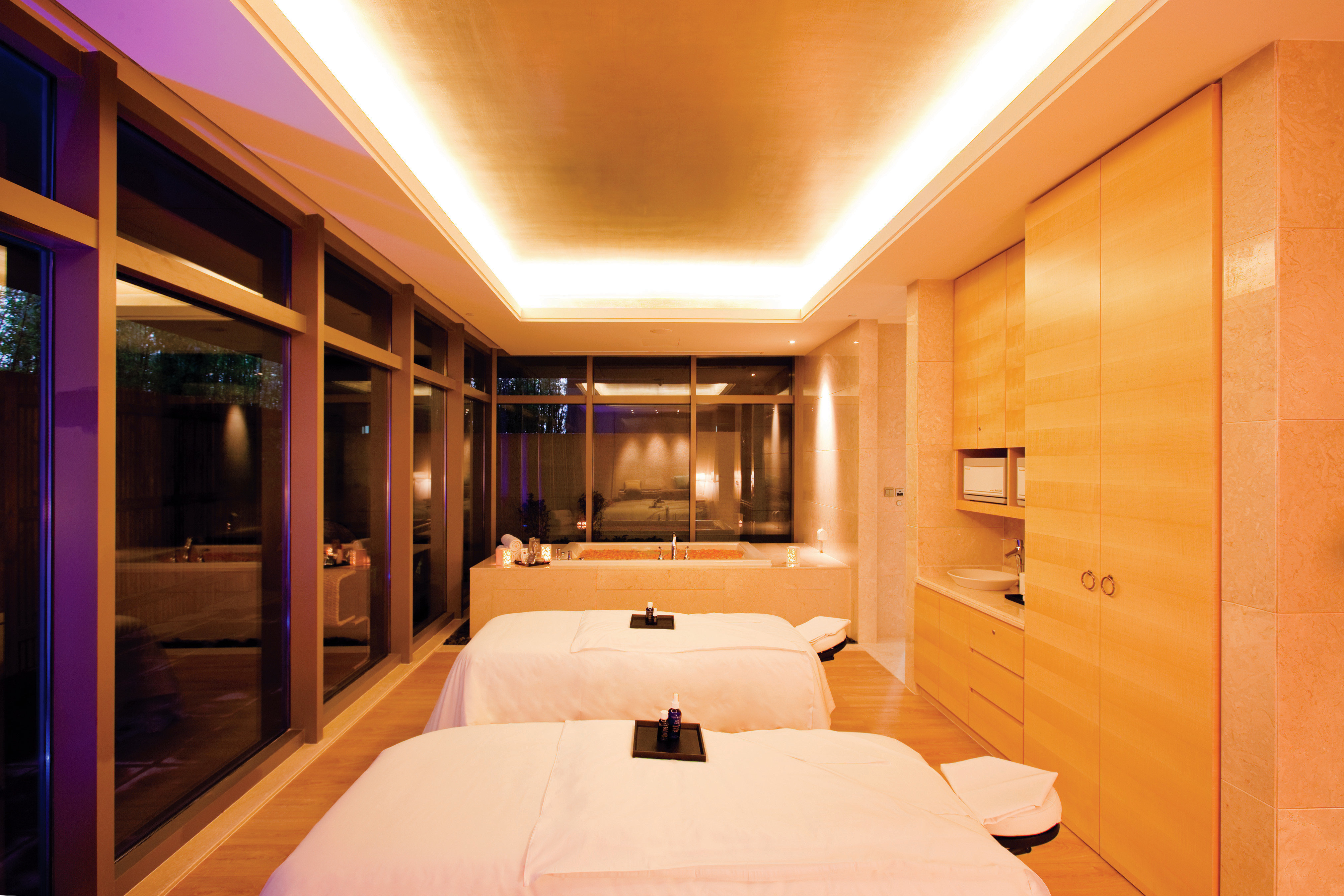 Hip Hot tub/Jacuzzi Luxury Spa Bedroom yacht passenger ship Boat Suite