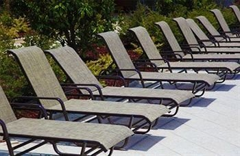 bench tree ground park leisure sunlounger outdoor furniture empty outdoor structure lined surrounded