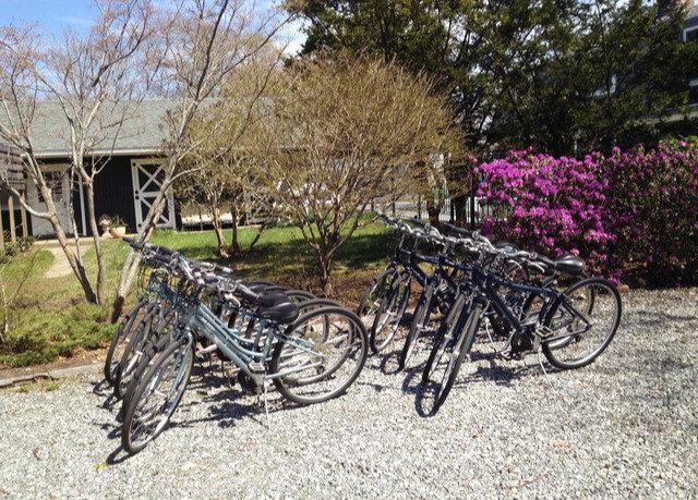 tree bicycle ground vehicle land vehicle parked wheel carriage cart