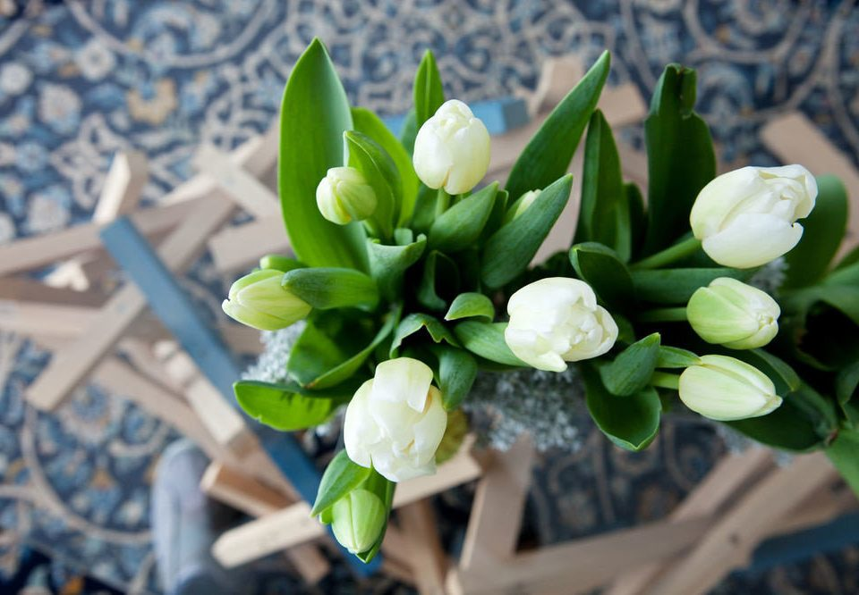 flower plant green flora flower arranging floristry botany flower bouquet land plant flowering plant blossom floral design macro photography
