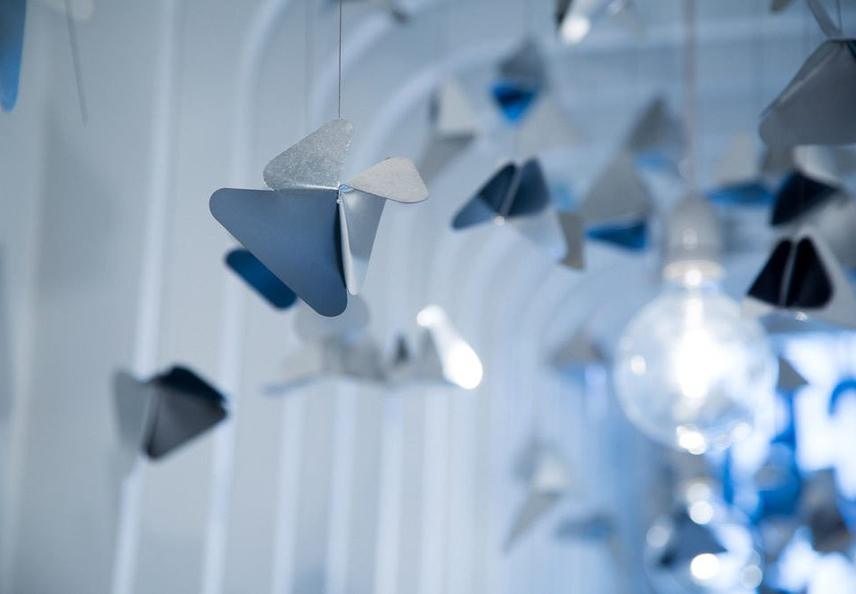 color blue white light product petal lighting flower