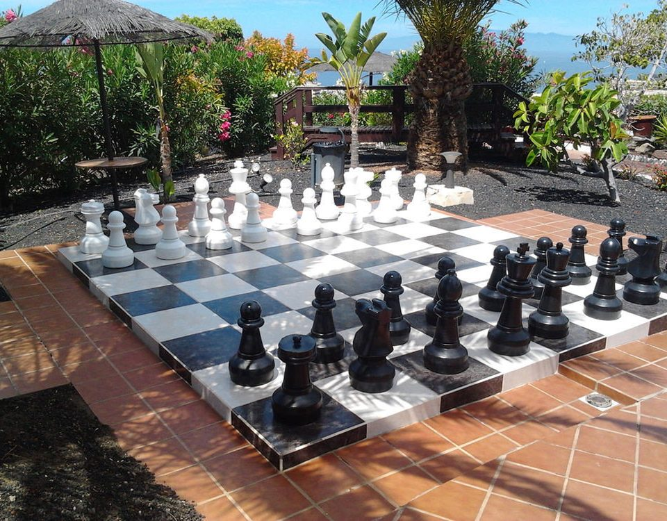 tree ground chess sports games board game indoor games and sports chessman leisure recreation tabletop game chessboard stone