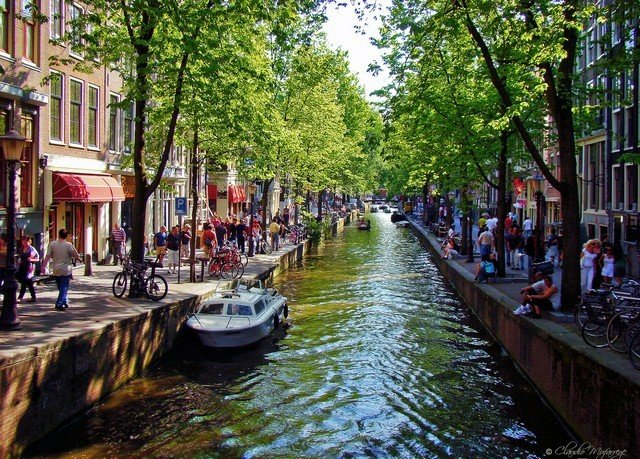 tree water Canal Boat waterway River narrow Town City lined traveling line