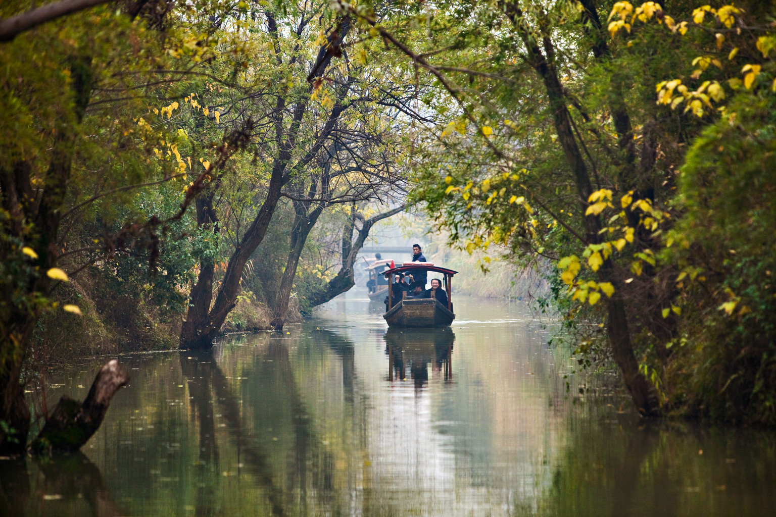 Boat Cultural Nature Outdoor Activities tree water atmospheric phenomenon River Canal waterway season morning autumn leaf vehicle stream way plant