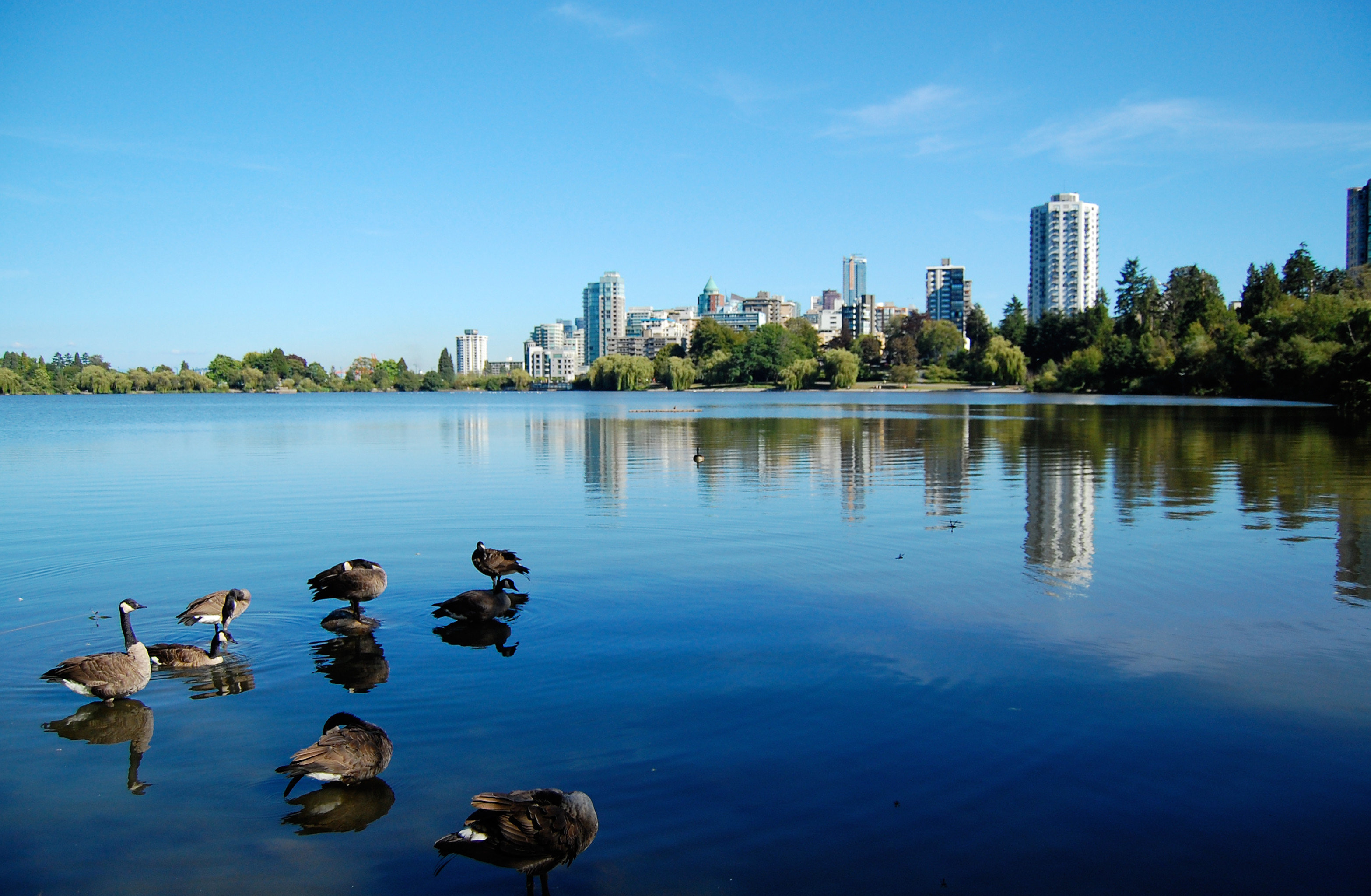 City Modern Parks Scenic views water sky Boat Lake River tree Nature morning Sea dusk park shore