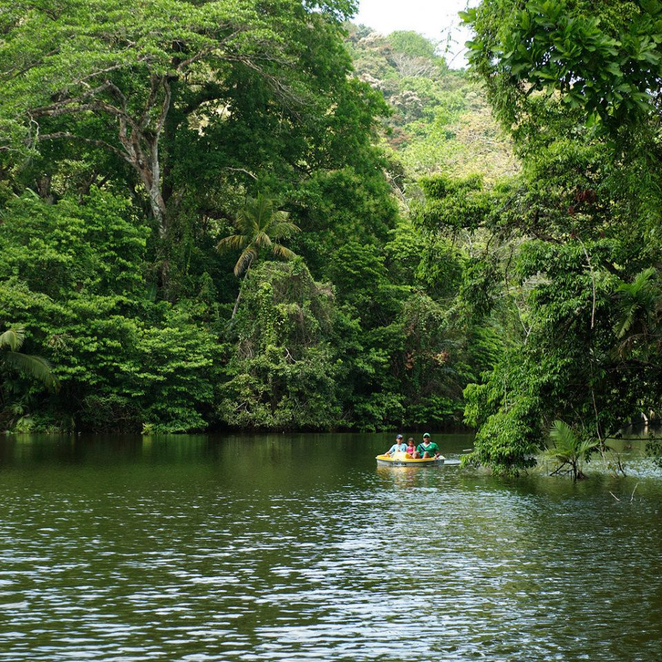 Boat Nature Outdoor Activities Outdoors Scenic views tree water habitat River natural environment Forest Lake Jungle rainforest pond vehicle boating stream canoe waterway wooded surrounded traveling