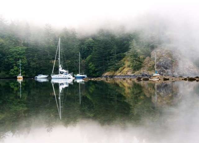 water Boat atmospheric phenomenon smoke River steam vehicle Lake loch boating reservoir waterway Forest day