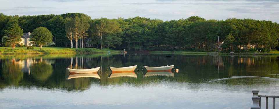 Inn Lake tree water Boat pond River reservoir fish pond wetland waterway park surrounded colored