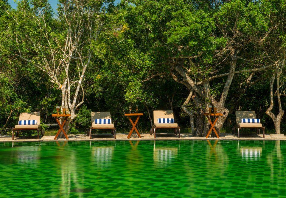 tree bayou swimming pool Resort Jungle waterway Boat wooded